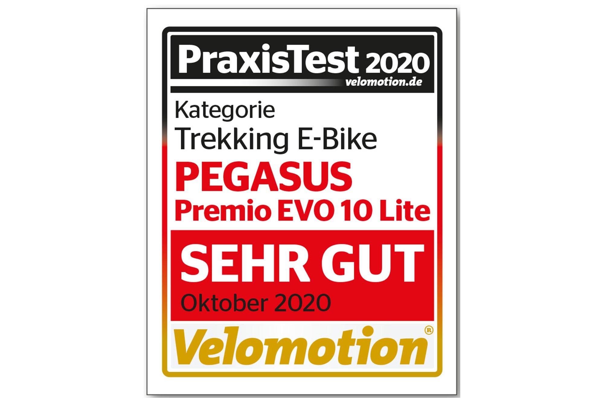 Pegasus Premio Evo 10 Lite (625 Wh), 10 Gang Kettenschaltung, Herrenfahrrad, Diamant, Modell 2020, 28 Zoll